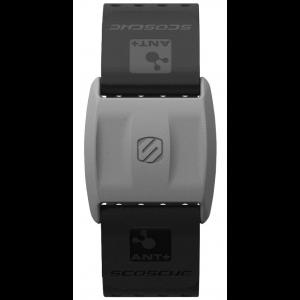Rhythm+™ Armband - Black